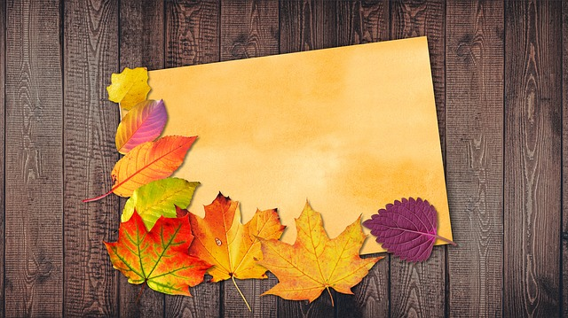 Watercolour, Orange, Autumn, Leaves, Colorful