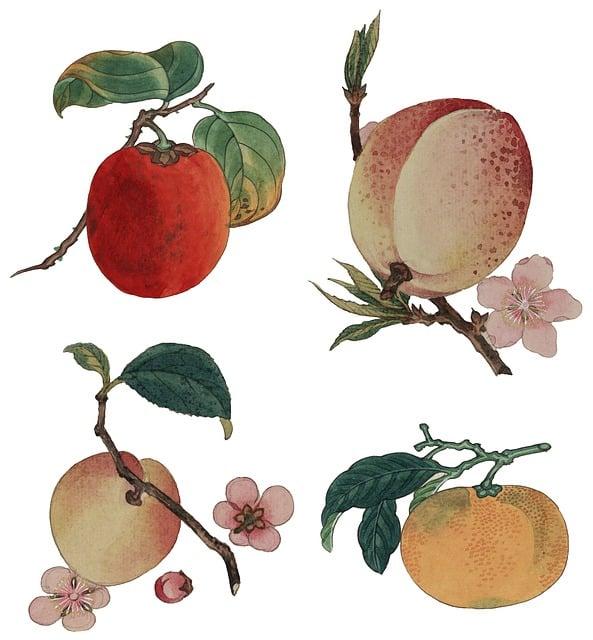Vintage, Watercolour, Watercolor, Painting, Print
