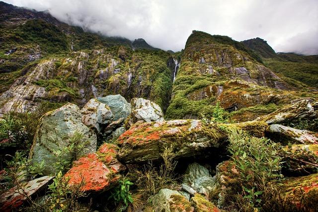 Rainforest, New Zealand, South Island, Waterfall