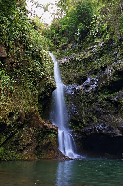 Waterfall, Maui, Vacation, Scenic, Landscape, Hana