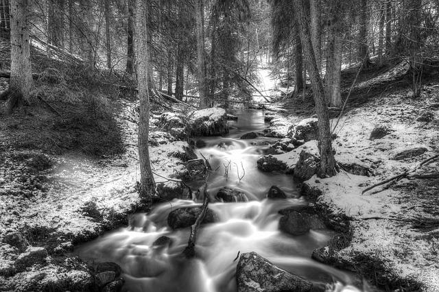 Forest, Brook, Winter, Swedish Nature, Creek, Waterfall
