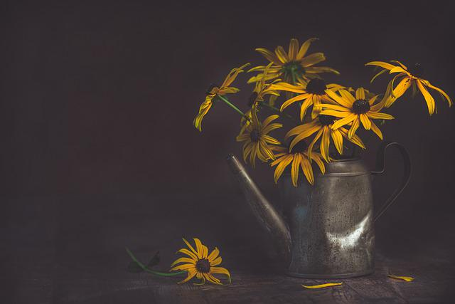 Flowers, Watering Can, Vintage, Watering Pot