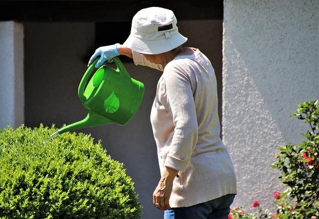Hat, Watering Can, Pensioner, Gardening, Summer, Garden