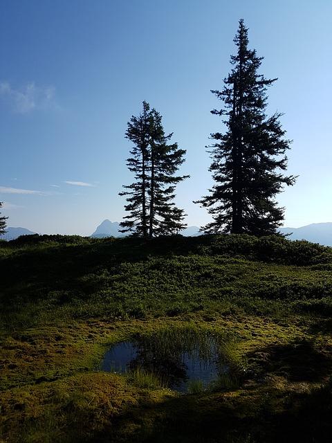 Coatings, Lake, Pools, Waters, Landscape, Wilderness