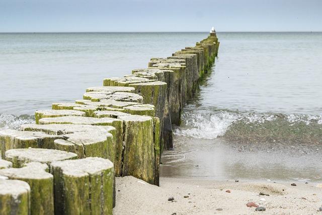 Waters, Sea, Beach, Ocean, Coast, Groynes, Baltic Sea