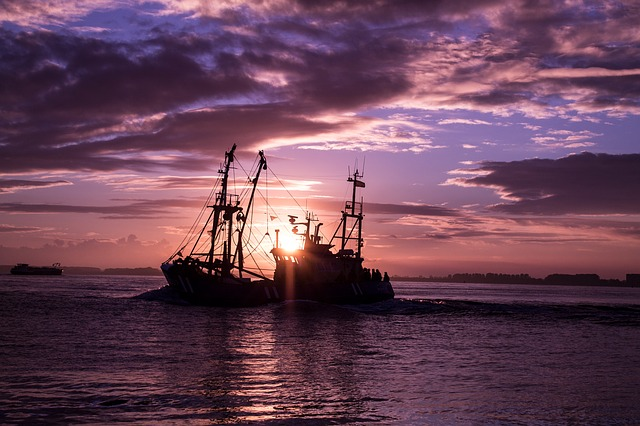 Waters, Sea, Sunset, Ship, Transport System, Ocean