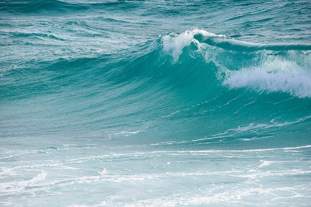 Surf, Water, Wave, Sea, Ocean, Nature, Foam, Splash