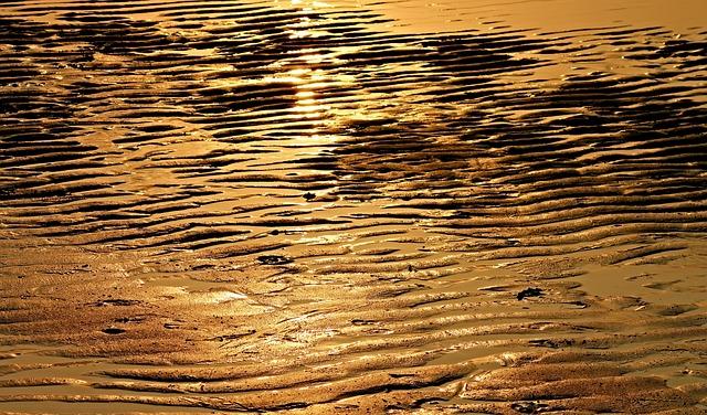 Beach, Ebb, Sunlight, Wave, Evening Light, Evening Sun