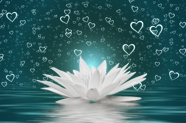 Heart, Water Lily, Water, Wave, Love, Valentine's Day