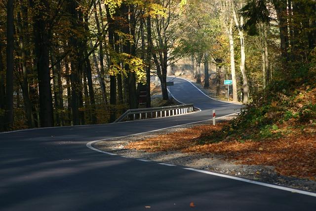 Way, Highway, Street, Autumn