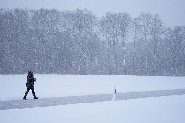 Blizzard, Person, Escape, Way Home, Winter Storm