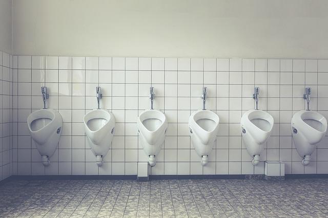 Toilet, Loo, Wc, Public Toilet, Toilet Cabin, Public
