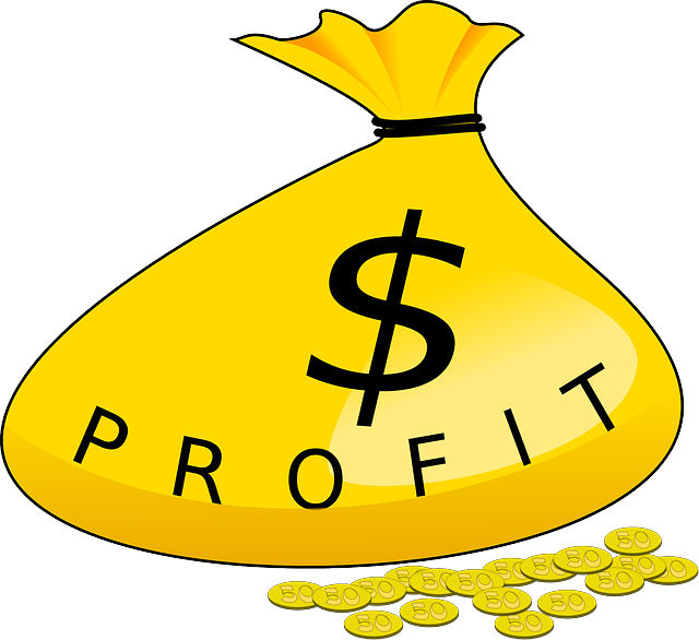 Money, Bag, Profit, Gold, Coins, Wealth, Investment
