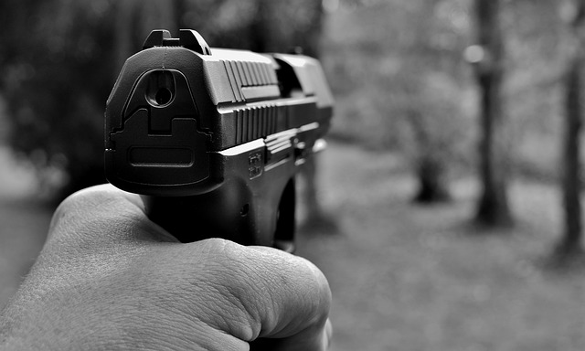 Pistol, Weapon, Target, Crime, Fight, Police