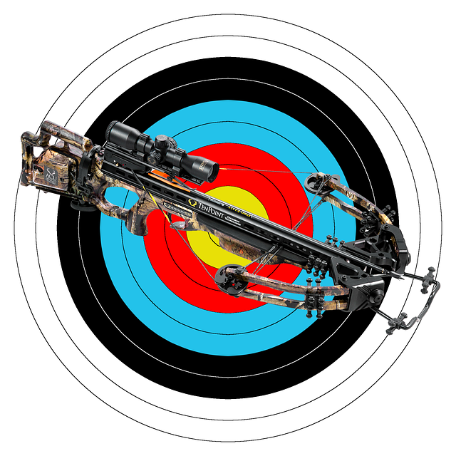Crossbow, Weapon, Sport Weapon, Arrow, Target