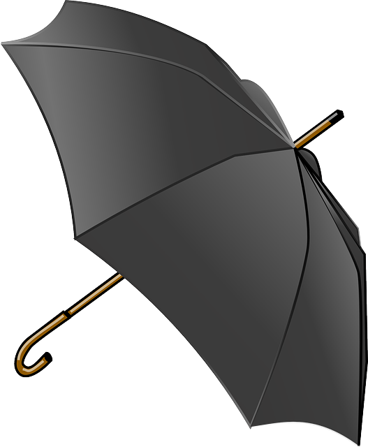 Umbrella, Tool, Weather, Canopy, Rain, Autumn, Black