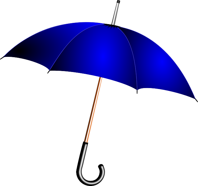 Umbrella, Blue, Rain, Weather