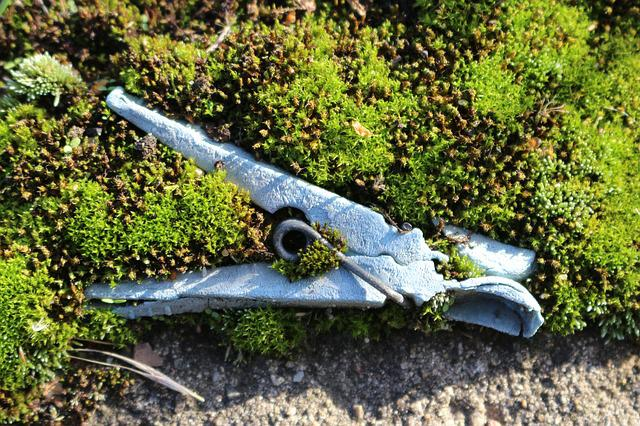 Moss, Clothes Peg, Old, Antique, Weathered