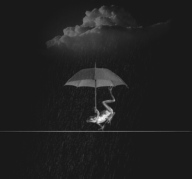 Weatherman, Rain, Wet, Water, Rainstorm, Screen