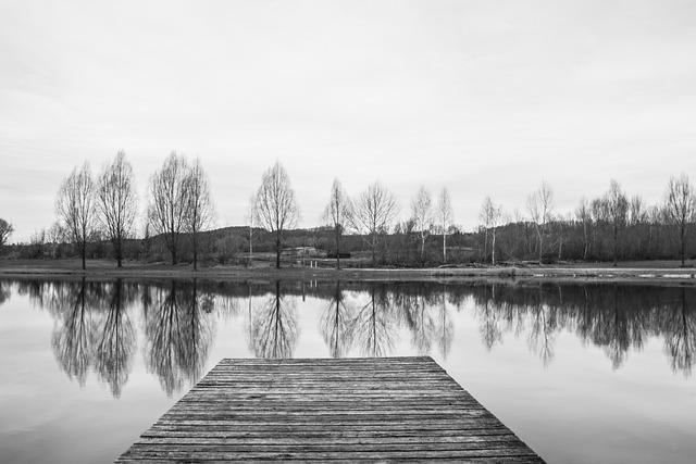 Black White, Monochrome, Web, Lake, Water, Nature