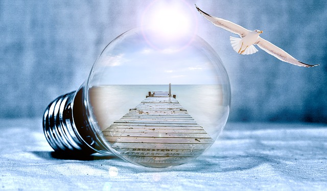 Light Bulb, Seagull, Sea, Web, Freedom, Fly, Pear