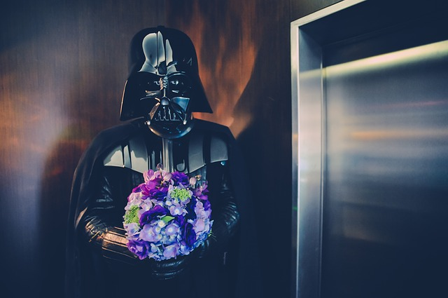 Star Wars, Flower, Soldier, Dark, Darth Vader, Wedding