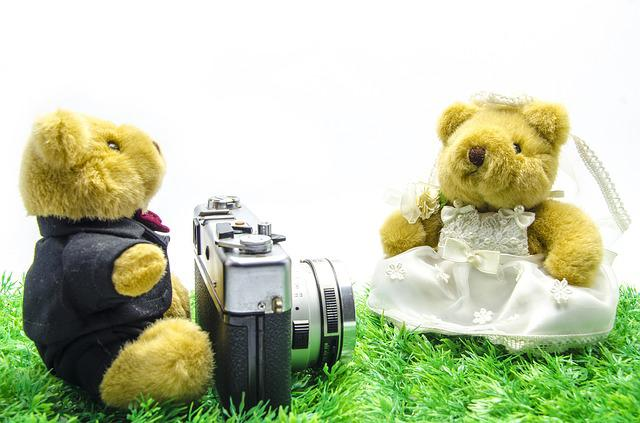 Valentine, Wedding, Bear, Old Camera, Vintage Camera