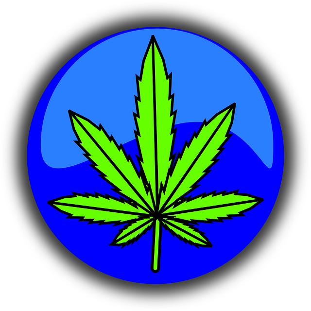 Cannabis, Marijuana, Leaf, Symbol, Icon, Drug, Weed