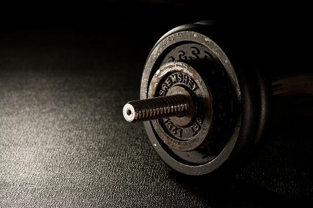 Fitness, Weight, Dumbbell, Fitness Studio
