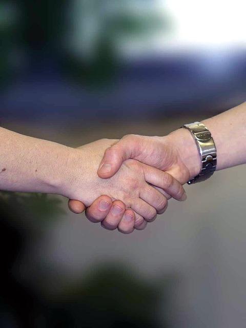 Handshake, Hands, Welcome, Farewell, Shake