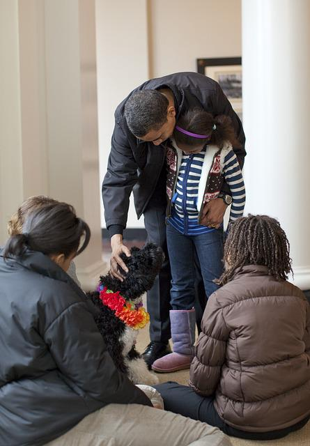 The Obama Family, Welcomes Bo, Puppy 6 Months