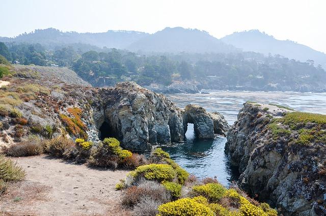 Usa, America, Coast, West Coast, Point Lobos, Landscape