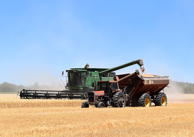 Combine Harvester, Tractor, Hopper, Harvest, Wheat