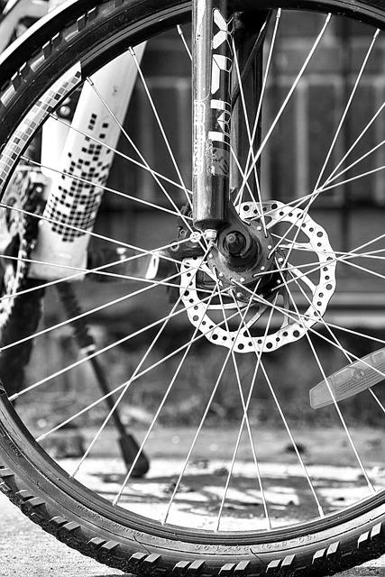 Wheel, Bike, Cycle, Spoke, Outdoors, Round