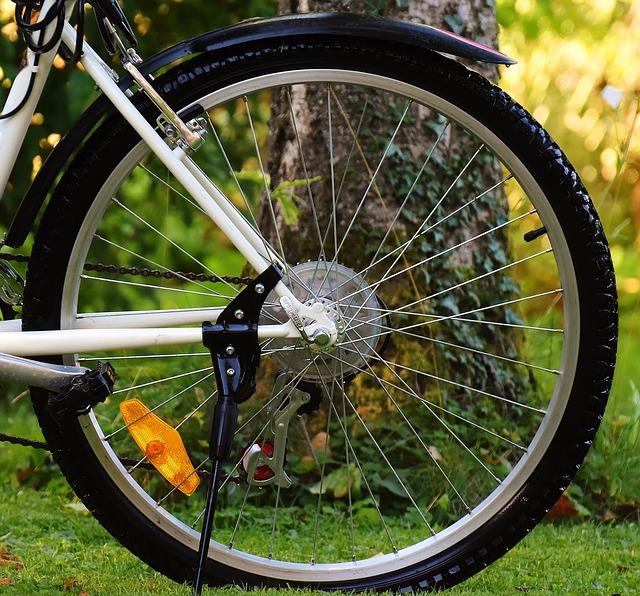 Bike, Rear Wheel, Cycle, Wheel, Cycling, Sport