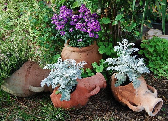 Amphorae, Terracotta, Flowers, Violet, White, Vases