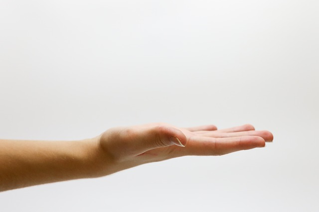Hand, Asking, Offering, White Background