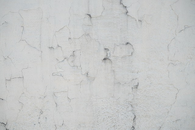 Wall, Plaster, White, Grey, Cement, Macro, Detail