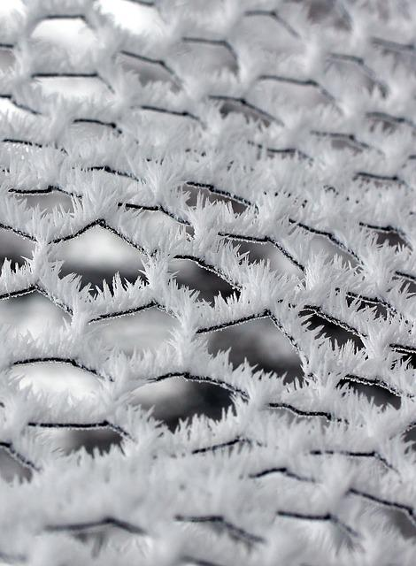 Fence, Winter, Frozen, Rime, White