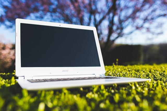 Laptop, Grass, Sunny, Computer, White, Technology
