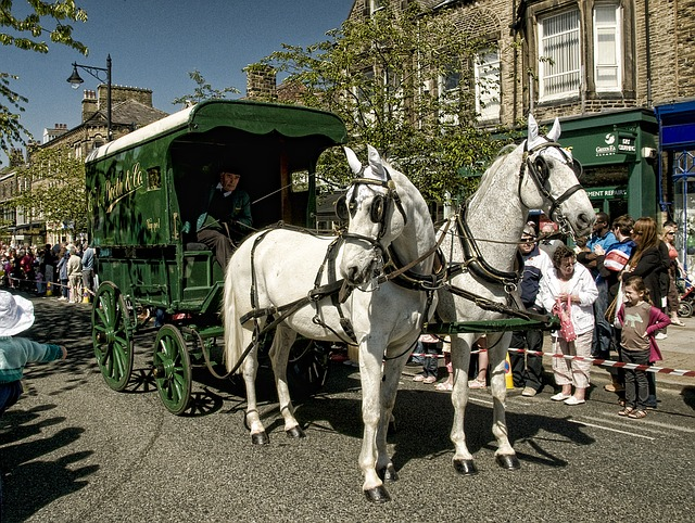 Horse, Carriage, Ilkley, White Horses, Procession