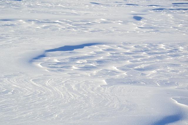 Snow, Snowdrifts, Shadow, Field, Winter, Nature, White