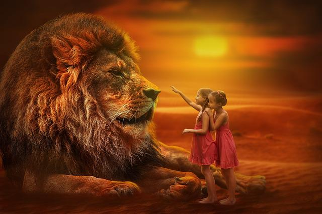 Lion, People, Twins, Sunset, Nature, Wild Animal, Girl