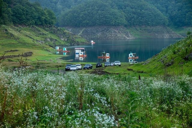 Lake, Autumn, Fishing, Wildflower, Water House, Nature