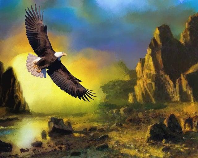 Eagle, Wildlife, Sunset, Flying, Nature, Bird