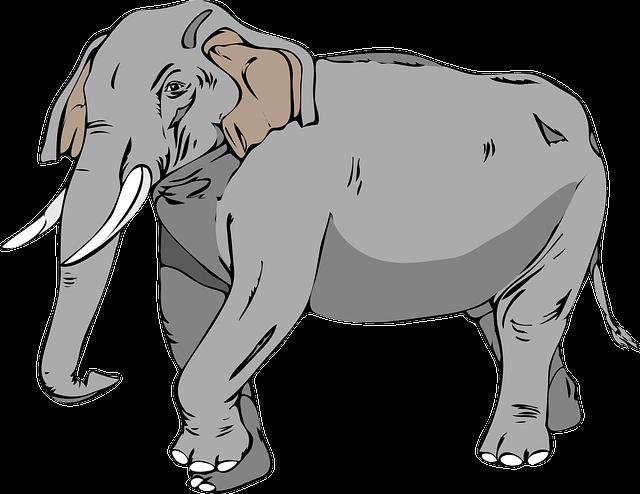 Elephant, Large, Animal, Mammal, Trunk, Tusks, Wildlife