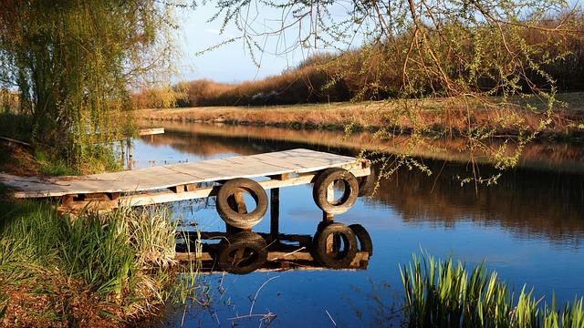 Pier, Port, Boat, River, Creek, Willow, Summer