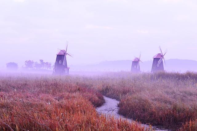 Fog, Field, Silver Grass, Windmill, Wind, Morning, Sky