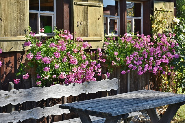 Farm, Floral Decorations, Window, Wooden Bench, Bank