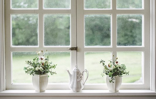 White, Window, Glass, Shield, Frame, Flower, Vase